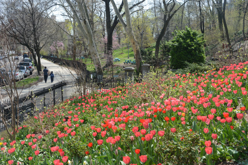 Get Outside in New York City